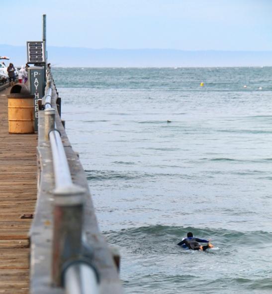 Surffaaja meni hyiseen veteen tuulisessa ja viileässä säässä.