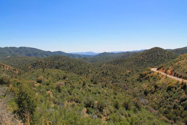 Metsämaisemaa ennen Prescotin kaupunkia.