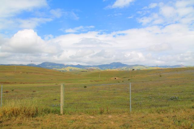 Hearst Ranchin niittyjä.