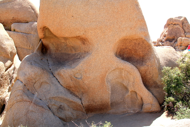 Skull rockin löytää aikalailla tien vierestä, vähän tarvitsee vain nousta kallioille nähdäkseen tämän luonnon muodostelman.