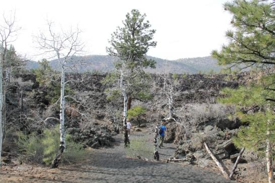 Flagstaffin pohjoispuolella on Sunset Craterin kansallismonumentti (National Monument kuten Montezuma Castlekin) ja siellä on laavakivialueita. Tässä kasvoi aavemaisia haapoja.