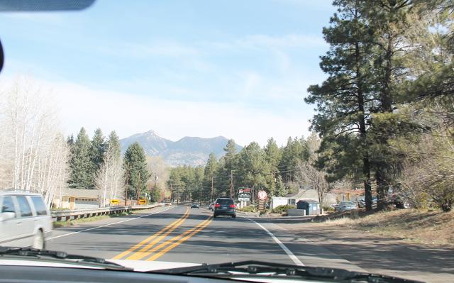 Tietä Flagstaffin jälkeen. Flagstaff on viileämpää ylänköä ja siten siellä kasvoi mäntyjä ja maisemista tuli mieleen ennemmin joku Washingtonin osavaltio kuin Arizona.