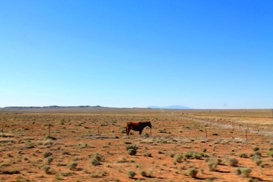 Lännen aavikkoa.