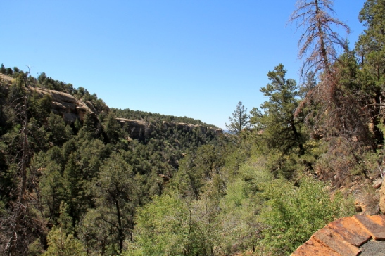 Spruce Tree House ja muut Mesa Verden kallioasumukset ovat tällaisissa rotkoissa. Yhteisöjä on varmaan ollut kätevä puolustaa.