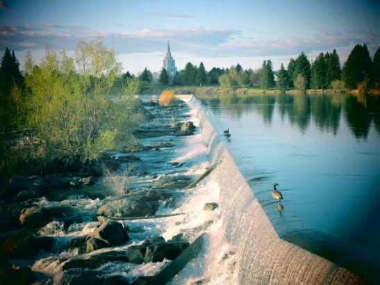 Idaho Fallsin putoukset ja hanhet siinä reunalla. Reunan alla on kait turbiineja vesivoiman tuottamiseen.