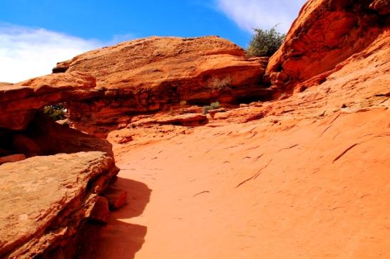 kävelymaastoa ylhäällä canyonlandsissa