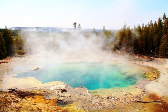 Emerald Pool sijaitsee Norrisilla eri suunnassa kun aiemmat kuvat, Back Basinilla. Siellä kun olisi jatkanut eteenpäin olisi polun varrella varmasti ollut vaikka mitä, mm. Steamboat geyser ja Cistern Spring.