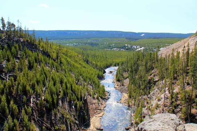Joki Gibbon Fallsilla läntisessä Yellowstonessa ihan tien vieressä.