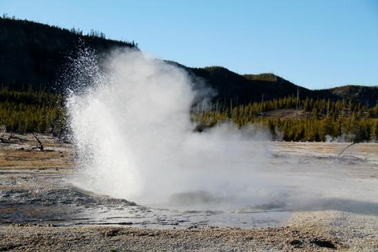 Tyypillisesti Yellowstonen geysirit vaikuttivat olevan tällaisia, jotka puskivat vettä aina välillä.