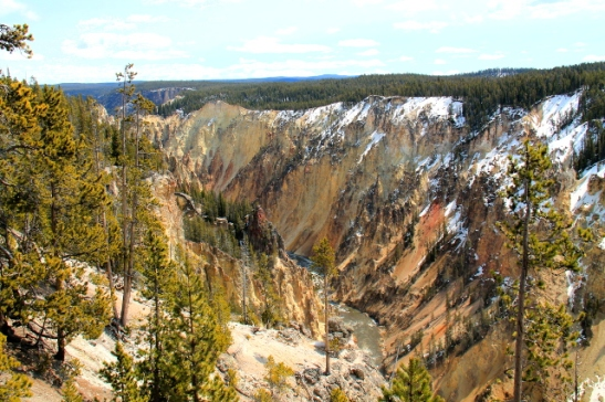 yellowstone grand canyon_1