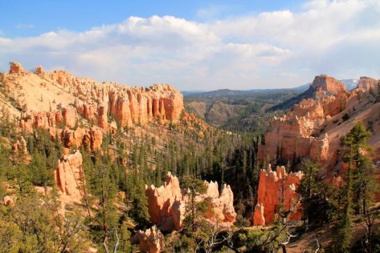 Brycen kanjonilla näyttää paljon tältä.