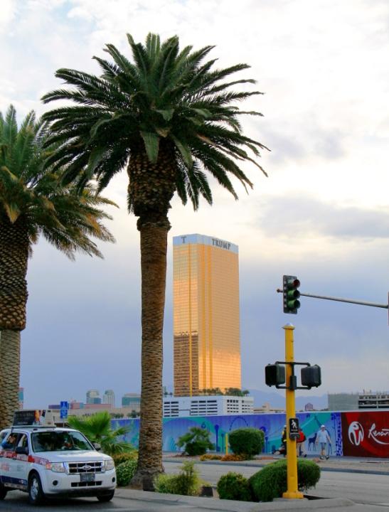 Ihanko oikeasti jotkut meinaavat että kultaisia omalla nimellään varustettuja torneja rakenteleva tyyppi olisi sopiva presidentiksi?