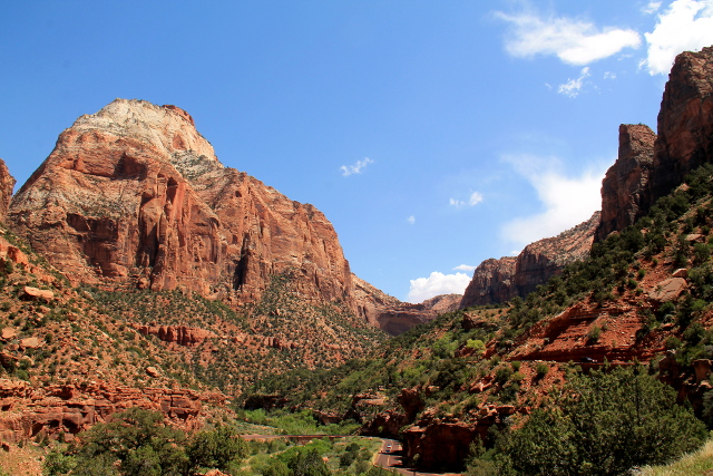 zion national park_15