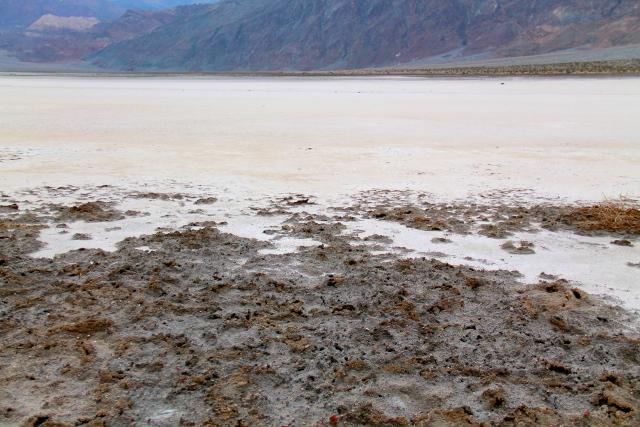 Edessä mudalta näyttävä hiekka on oikeasti kovapintaista ja kuivaa,