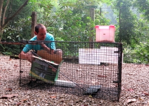 Eläintenpyydystäjä työssään, villikoira pitää saada kiinni jotta se voitaisiin steriloida. Sterilointi on ainoa eläinystävällinen tapa vähentää kulkukoiria ja -kissoja.
