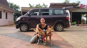 Taustalla Mee Pet Taxin auto. Kuva: Mee Pet Taxin Facebook-sivu