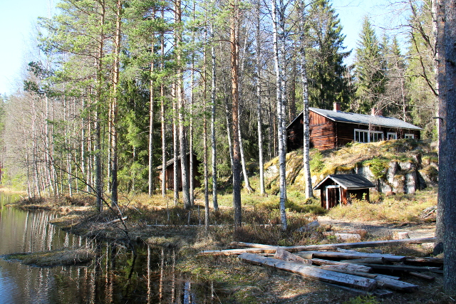 Lortikka sijaitsee lammenrannalla ylhäällä.