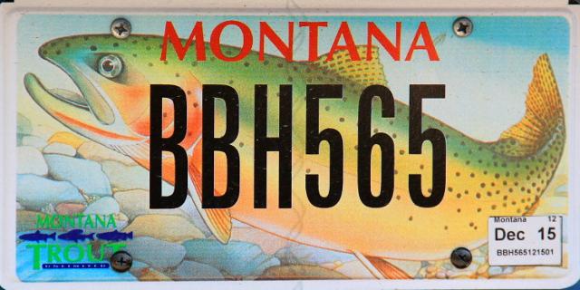 Montanan kalarekkari.