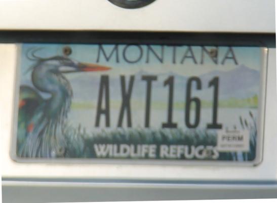 Montanan linturekkari.