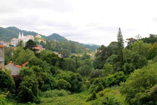 Sintran rautatieaseman vieressä on tällainen laakso, joka on yhtä pusikkoa.