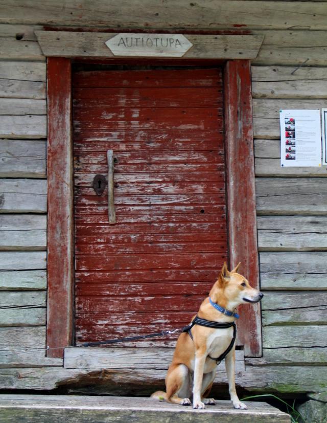 Autiotuvan ovi ja Alfa.