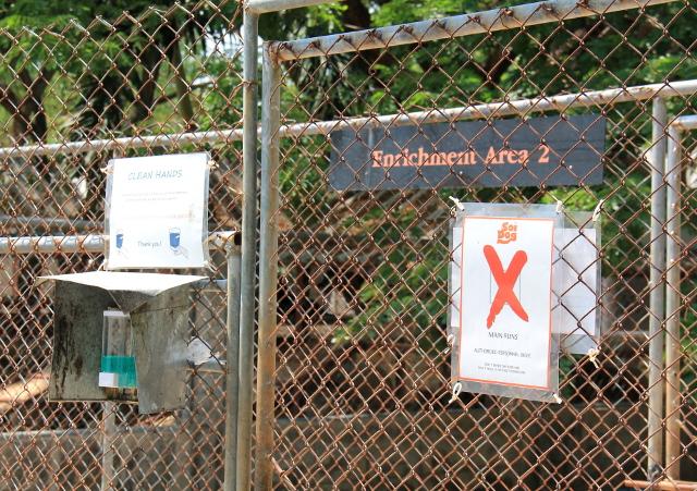 Koira-alueiden portti.