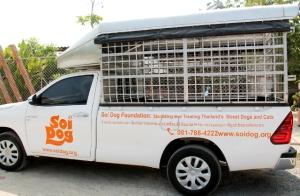 Soi Dogin eläinten pyydystäjät etsivät koiria ja kissoja, jotka tuodaan näillä autoilla Soi Dogille steriloitavaksi, rokotettavaksi ja tarpeen mukaan muuta hoitoa saamaan.