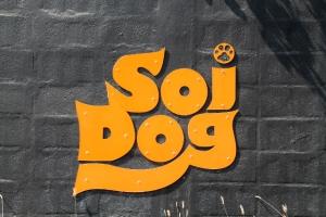 Soi Dogin logo.