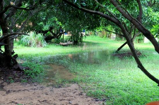 Muualla kuin kaupungin kerrostaloissa asustellessa tulee vastaan kaikenlaisia tällaisia hankaluuksia, kuten sadevedestä tulvivat pihat.