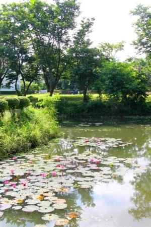Moo Baaneissa on töissä puutarhureita ja siivoajia pitämässä siisteydestä huolta.