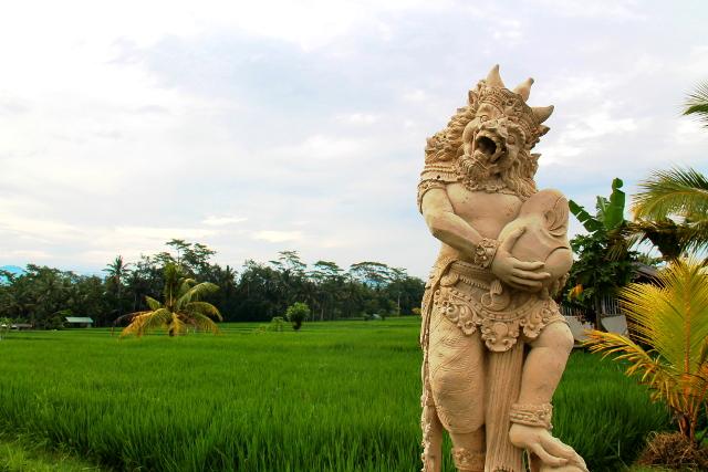 Riisipelto Ubudissa.