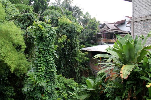 Tässä on talo jokikanjonin vieressä Balin keskustassa. Nämä jyrkät kanjonit ovat yllättävän syviä ja yhtäkkisiä.