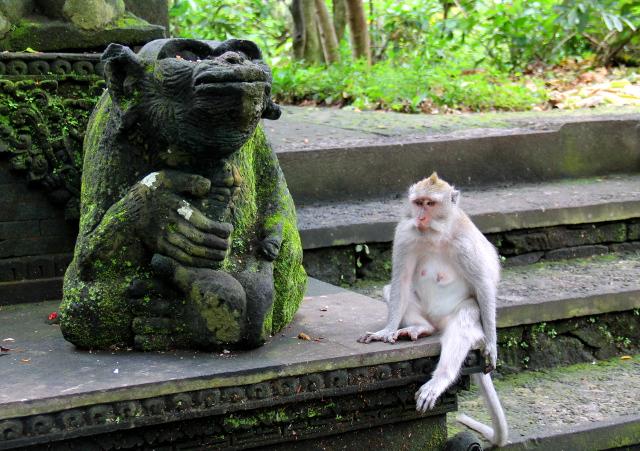 apina-patsaan-vieressa