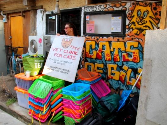 Cats of Gilin kissakauppa Gili Trawanganilla on paikka, jonne tavarat palautettiin ja josta seuraava klinikka pyörähtää käyntiin todennäköisesti huhti-toukokuussa 2017.