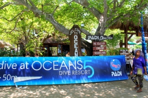 Oceans 5 on hyvis sukelluskeskus, joten kannattaa valita se Gili Airille mennessä. Se sijaitsee aivan saaren satamassa. Niillä on myös hienoa majoitusta uima-altaineen.