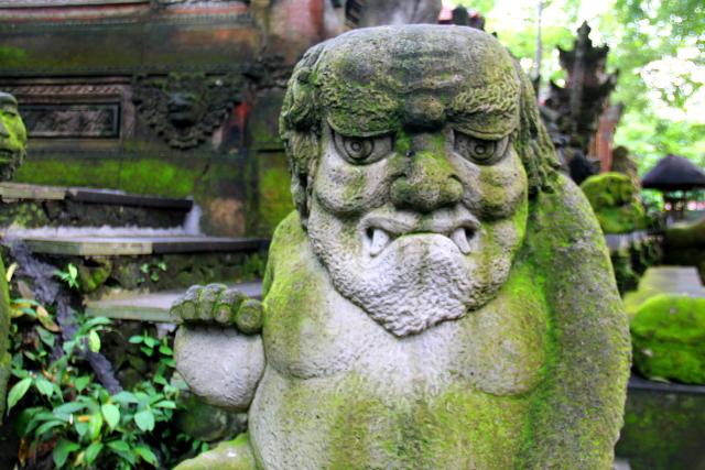 patsas-monkey-forestissa-2