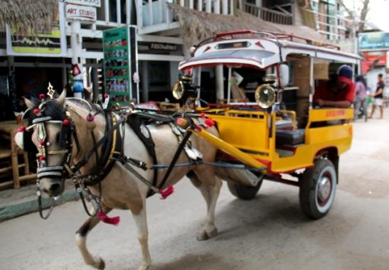 Trawanganilaiset hevoskärryt.