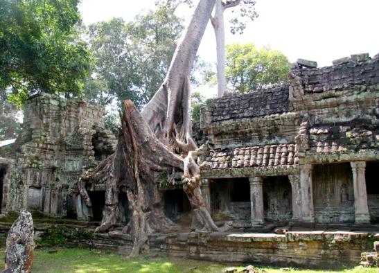 juuria-temppelirauniolla
