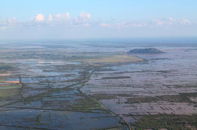 kambodzan-vetisia-peltoja