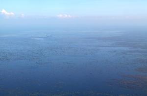 Tonlé Sap -järven suistoa.