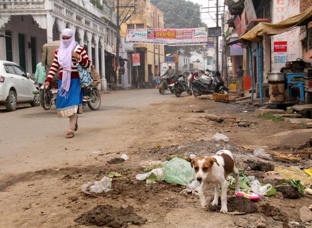 koiranpentu-varanasin-kadulla