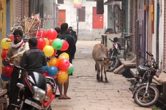 lehma-ja-ilmapalloja-varanasin-kujalla