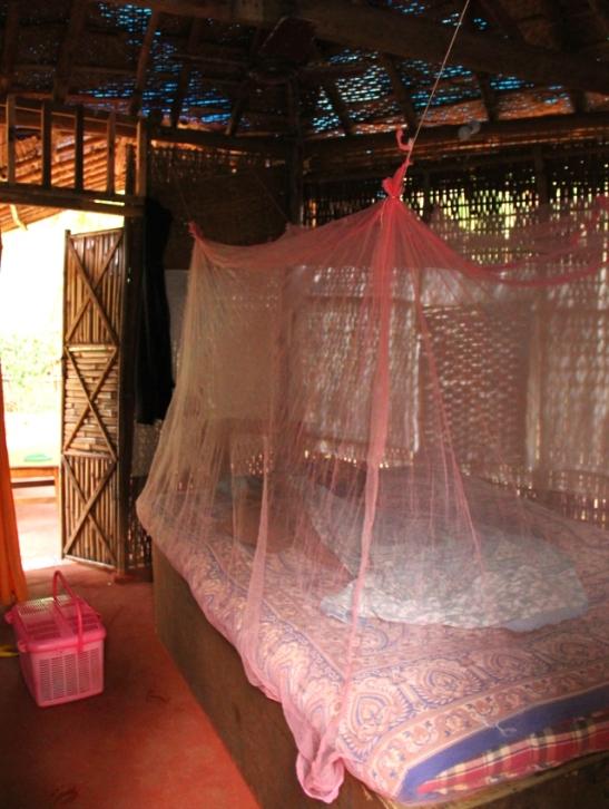 Huoneeni Seva´sissa. Hoitopentu nukkui aluksi lähinnä tuossa vaaleanpunaisessa korissa olleessaan kovin, kovin väsynyt.